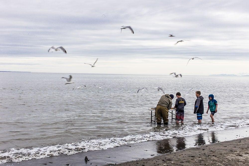 rybaření aljaška city of kenai