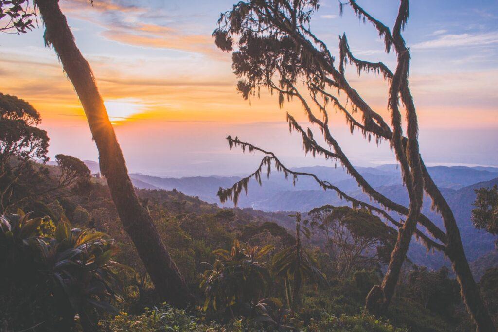 Nádherné ráno v ugandských horách