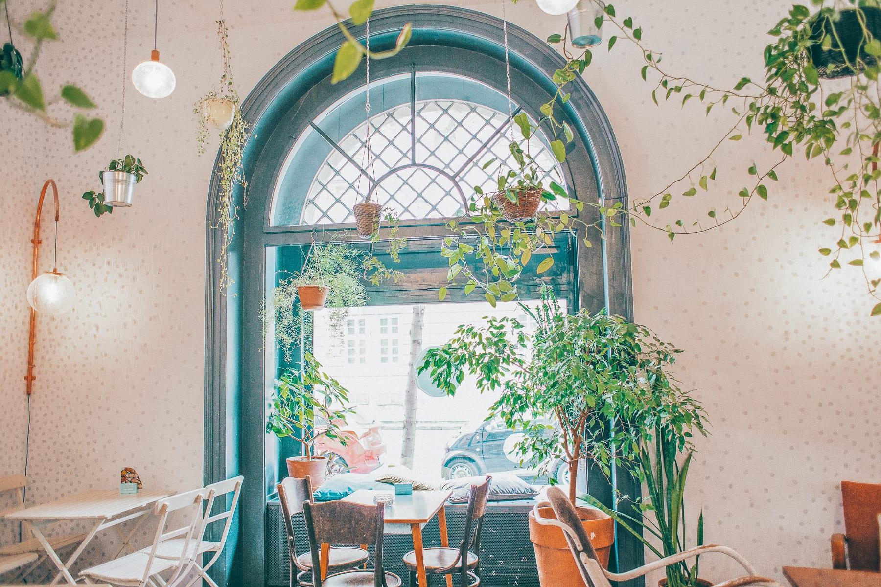 Parlor Café
