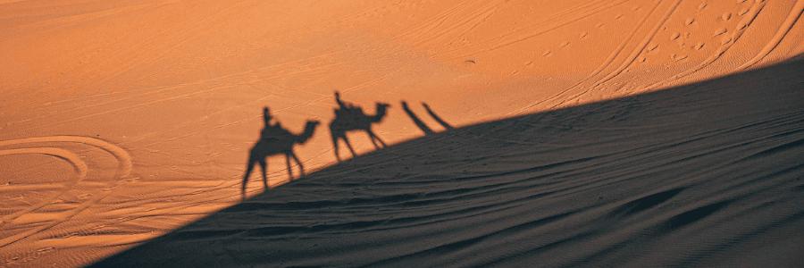 Cestování po Maroku na velbloudech